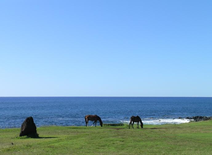 côté océan Hanga Roa