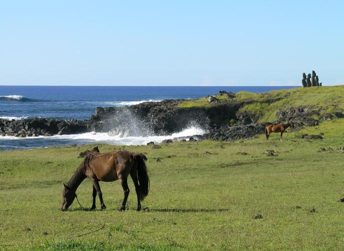 côté océan près du village