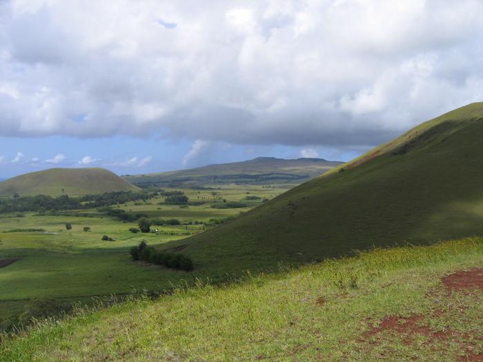 Site Te Puna Pau
