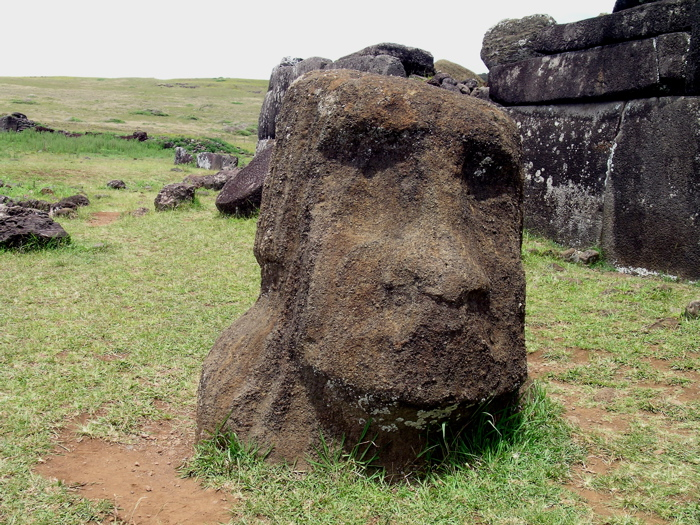 tête moai