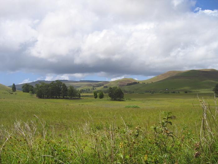 les alentours du Maunga Terevaka