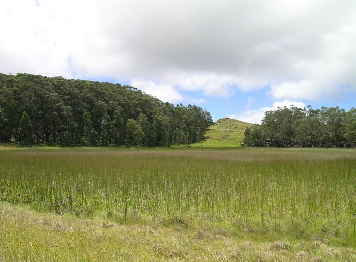lac de cratère : le Rano Aroi