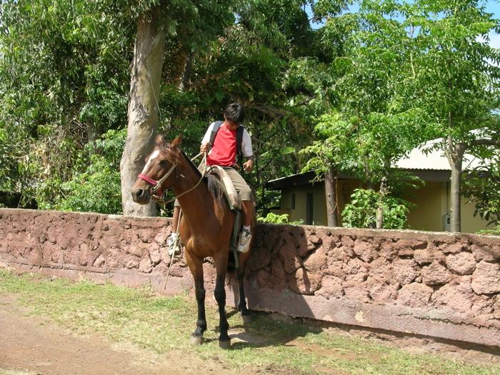 l'enfant et son cheval